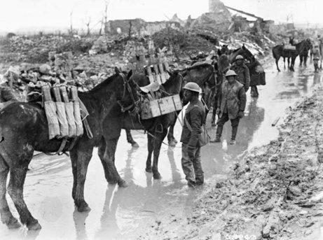 6._Horses_packing_ammunitions_feature