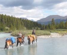 Millen, Tania horses in river