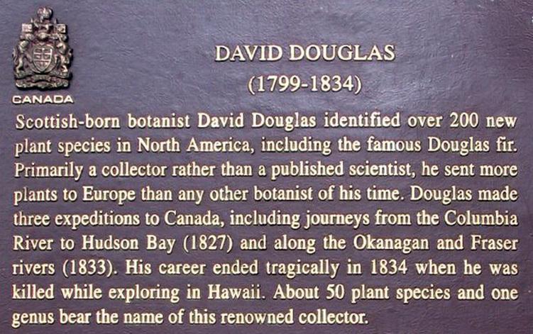 Douglas, David Cathedral Grove plaque