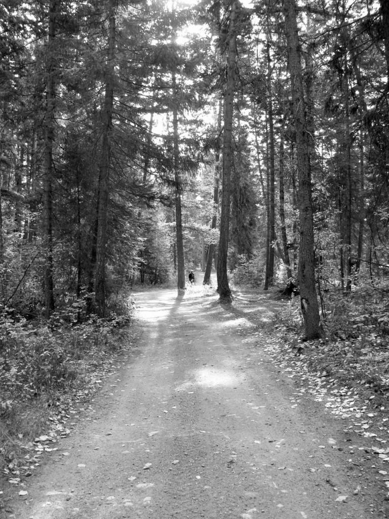 Milner, Donna Road to cabin