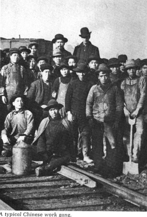 Yee, Paul, typical Chinese work gang